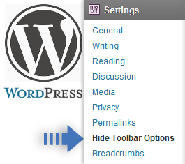 Removing the Wordpress Admin Bar